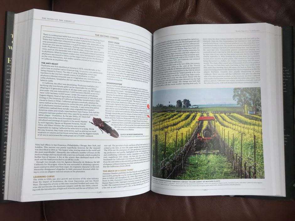 This image has an empty alt attribute; its file name is sharpshooters-The-New-Sothebys-Wine-Encyclopedia-940x705.jpeg